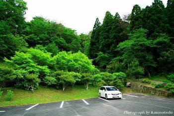 2008_05070305.jpg