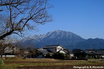 2011_01080137.jpg
