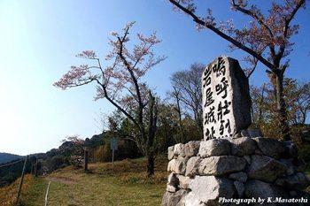 2011_04200024.jpg
