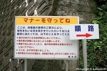 2011_09260191.jpg