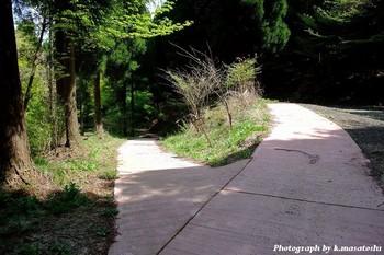 2010_05030129.jpg