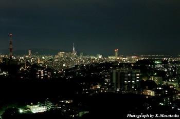2011_01210122.jpg