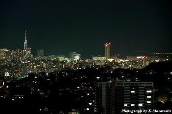 2011_01210154.jpg